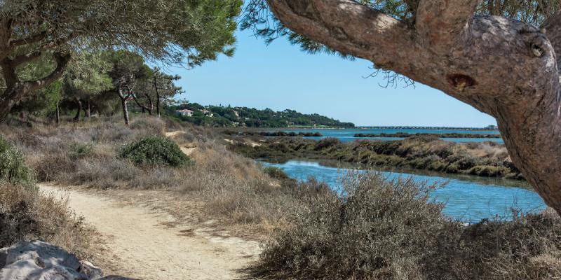 Ria Formosa in Algarve, Portugal